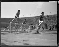 USC and Stanford runners approach hurdles at the Coliseum, Los Angeles, 1932