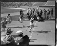 USC and Stanford runners approach the finish line at the Coliseum, Los Angeles, 1932