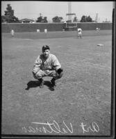 Los Angeles Angels baseball catcher Art Veltman on the field, 1933-1937