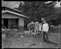 Donkey and 2 boys next to a house damaged by the catastrophic January flood and mudslide, La Crescenta-Montrose, 1934