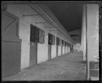 Horse stables at K.W. Kellogg's horse ranch, Pomona, 1932