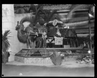 Anaheim booth at the Los Angeles County Fair, Pomona, 1929