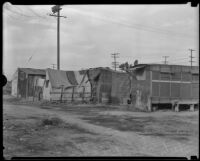 Row of homes in Alameda Hooverville, Los Angeles, 1930s