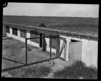 Poultry house in investigation of Gordon Northcott case, Mint Canyon (Santa Clarita), circa 1928