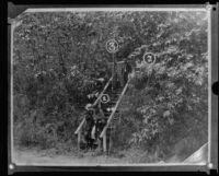Reenactment of J. Belton Kennedy murder scene (copy), Los Angeles, ca. 1921
