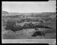 Petrified Forest, Arizona, rephotographed 1935-1965