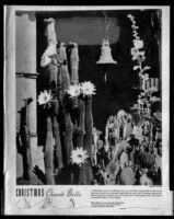 """Photograph of cacti and bell with caption beginning """"Christmas Church Bells"""""""