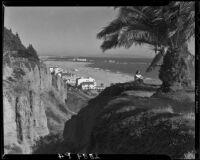 Woman beneath palm trees on a Palisades Park cliff, Santa Monica, 1946