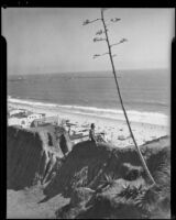 Woman seated on the cliff edge of the Idaho path with the beach beyond, Santa Monica, 1938