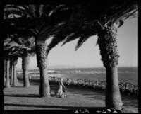 Woman among palm trees at Palisades Park, Santa Monica, 1937-1946