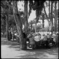 People gathered at a picnic