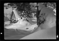 Cabins, one damaged and buried by snow, June Lake, 1938