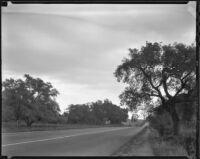 Road, Rancho Santa Anita, Arcadia, 1938