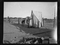 Arizona National Guard members setting up camp, near Parker, Arizona, 1934