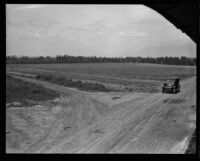 Car on dirt road near fields, Pasadena, [1929?]