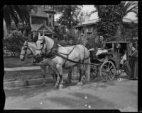 Horse-drawn carriage, Old Timers Parade, Riverside, [1933?]