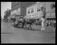 Ox team pulling a cart in the parade of the Old Spanish Days Fiesta, Santa Barbara, 1930