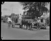 Girls riding an ox cart during the Old Spanish Days Fiesta, Santa Barbara, 1930