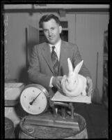 Tuberculosis researcher Dr. Emil Bogen and research rabbit on scale, Olive View Sanatorium, Sylmar, 1935