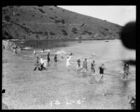Swimmers beginning the Wrigley Ocean Marathon at Isthmus Cove, Santa Catalina Island, 1927