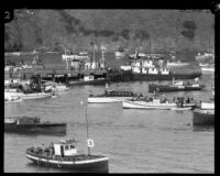 Boats in Isthmus Cove on the day of the Wrigley Ocean Marathon, Santa Catalina Island, 1927