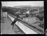 German shepherd Monee demonstrating tricks atop the Roosevelt Hotel, Hollywood, Dec. 10, 1929