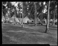 Tent encampment in a park after the Long Beach earthquake, Southern California, 1933