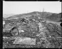 National Forest Inn ruins following fire, California, 1932