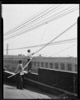 Henry J. Reider and Jess Ferguson saving a pigeon, Los Angeles, 1935