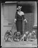 Elizabeth M. Wheaton showing off her prize-winning English bulldogs, Long Beach, 1935