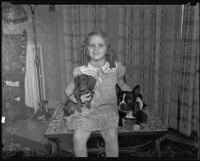 June Gertler with a Dachshund and a Boston bull pup, Los Angeles, 1935