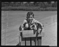 Dick Dunlap and piglets at the Los Angeles County Fair, Pomona, 1935