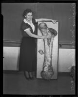 Virginia McFarland, USC student with prehistoric fossil, Los Angeles, 1935