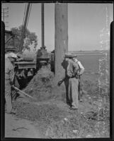 Workers dig up a telephone pole that carries high tension wires at Mines Field, Inglewood, 1935