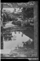View towards the Henry E. Huntington residence from the lagoon, San Marino, 1927 copy print