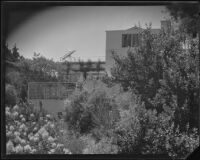 House seen from garden, possibly designed by J. R. Davidson or Jock Peters, Los Angeles County, 1928-1934
