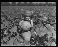 A boy in a pumpkin patch, Los Angeles, 1936