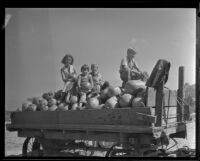 Four children sit atop a cart filled with pumpkins, Los Angeles, 1936