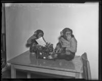 Ditto and Shorty pose with a typewriter at a photoshoot for the Los Angeles Times, 1936