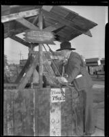 W. Parker Lyon leans over the wishing well at the Pony Express Museum, Arcadia, 1939