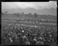 New Year Handicap Race at the Santa Anita Race Track, Arcadia, 1939