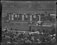 """Dear Diary,"" ""Morning Breeze"" and ""Hasten Henry"" finish the California Breeders' Stakes race at Santa Anita Park, Arcadia, 1938"