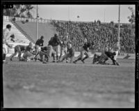 U.C.L.A. Bruins play Oregon State Beavers at Coliseum, Los Angeles, 1938