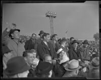 Fans cheering U.S.C. Trojans and Duke Blue Devils at the Rose Bowl, Pasadena, 1939