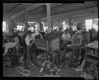 Workers creating upholstered furniture in the Roberti Brothers' furniture factory, Los Angeles, circa 1920-1930