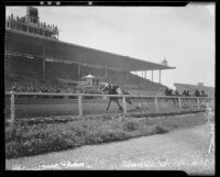 Horses on the home stretch passing the grandstand at Santa Anita Handicap race, Arcadia, 1936