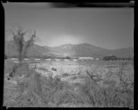 Distant view towards Santa Anita Park, Arcadia, 1936