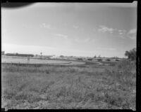 Santa Anita Park seen from a field behind the far turn, Arcadia, 1936