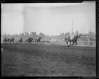 """Time Supply"" winning the San Antonio Handicap at Santa Anita Park, Arcadia, 1936"