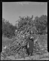 Kathleen Wright holds ears of corn and stands in front of a stack of corn shocks, 1935